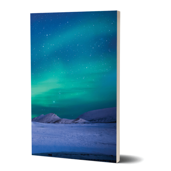 Does the Aurora Bore you Alice? Notebook